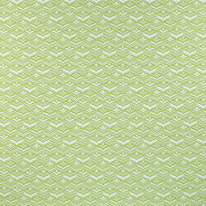 AVOCA (OUTDOOR) LIME
